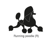 Running poodle (R)