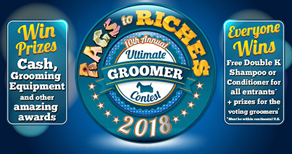 Rags To Riches contest 2018